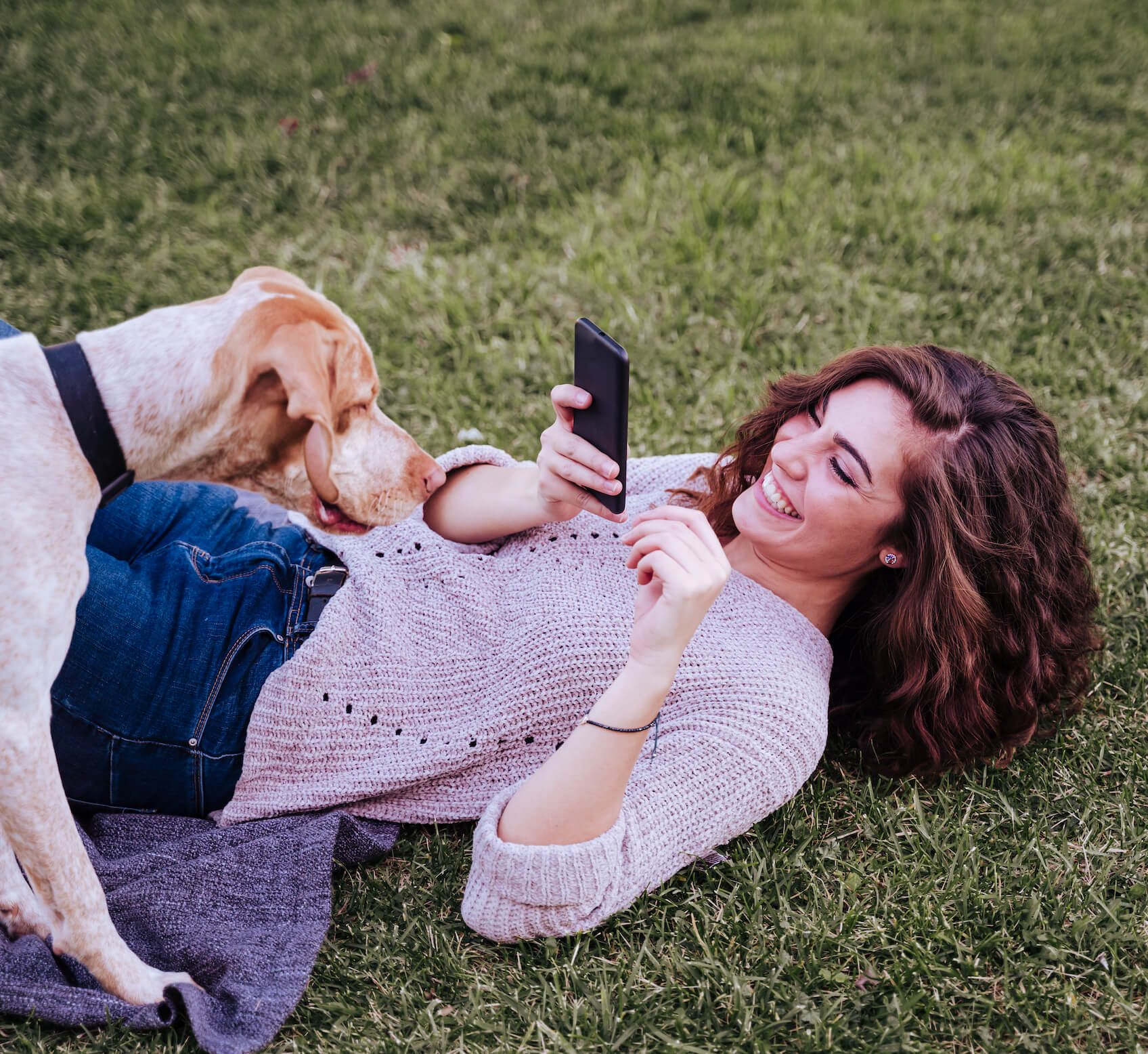 DogVacay App for Pet Owners and Sitters